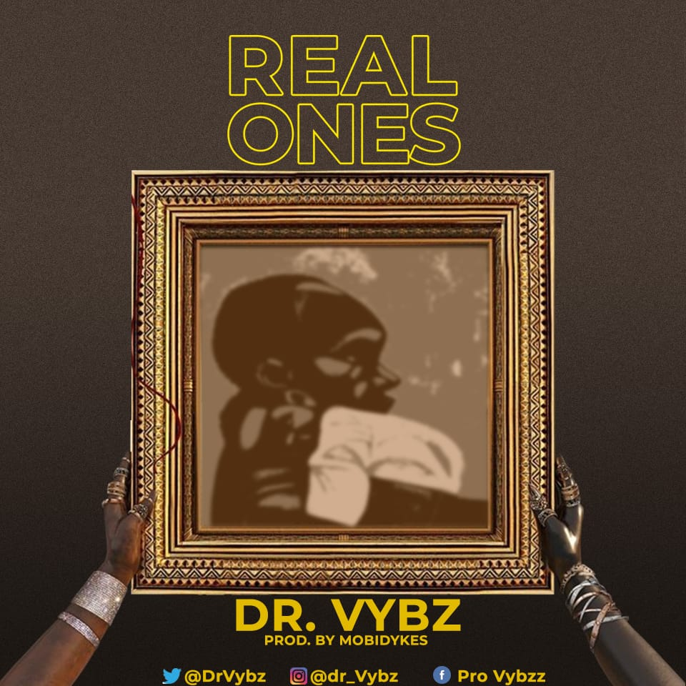 Dr Vybz, Pro Vibez